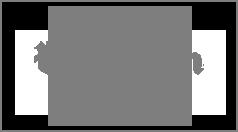 VA Pilot logo